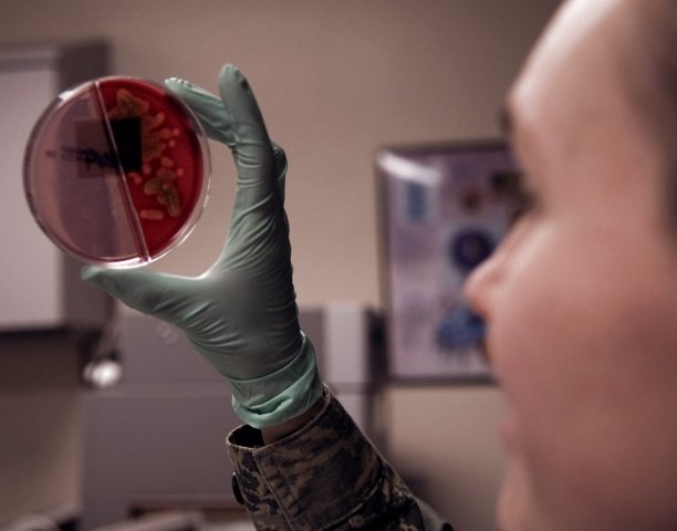 Staff Sgt. Karla Workman views a urine culture March for bacterial growth March 4 at Eielson Air Force Base, Alaska. Cultures are reviewed routinely in the medical laboratory for signs of disease of bacterial growth. Sergeant Workman is a 354th Medical Group clinical lab technician.